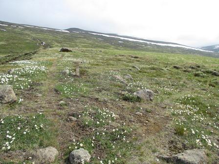 Á leið upp með Litlagili. Framundan er skilti sem vísar til hægri á Þingmannahnjúk. Það er rétta leiðin (til að byrja með).